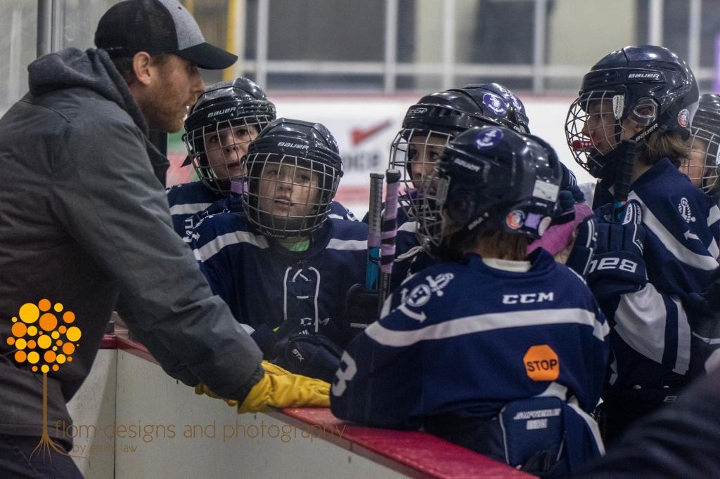 Hibbing Girls Hockey - U12