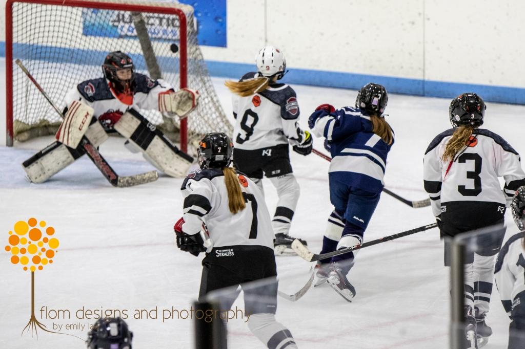 Goal - Hibbing Girls Hockey U12